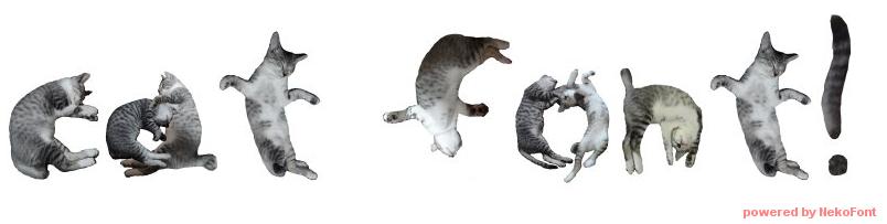 cat_font