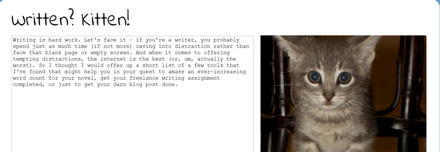 written_kitten