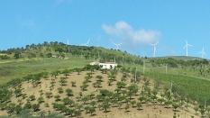 Farmland and turbines
