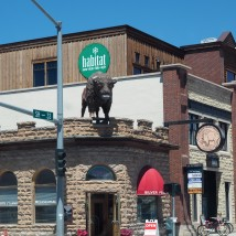 Put a giant bison on the roof? Yes, great idea!