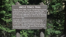 Uncle Tom's Trail Yellowstone National Park