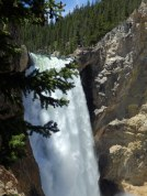 Upper Falls Yellowstone National Park