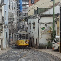 The famous Tram 28 (which we had to wait to pass since the street was only wide enough for one vehicle)