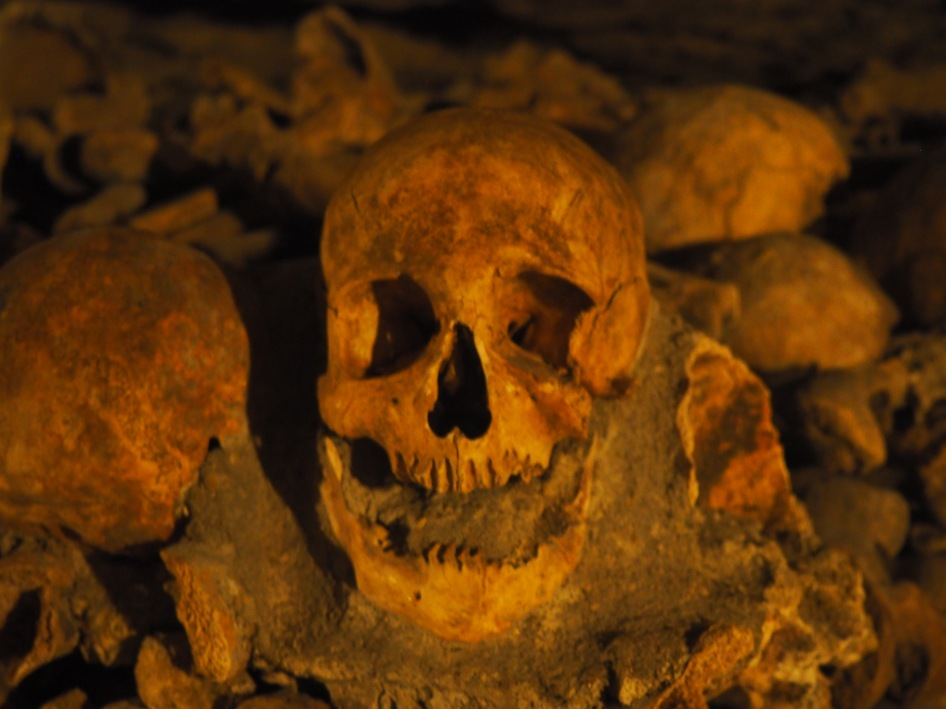 Paris Catacombs skull